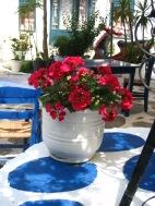 Skiathos town pots 1