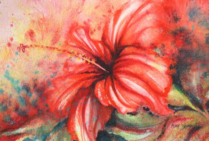 hibiscus resized
