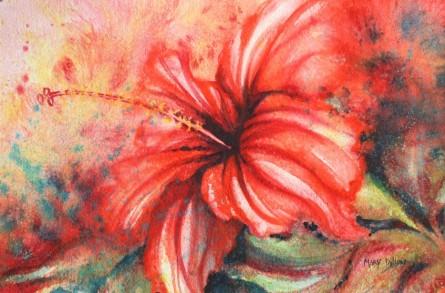 hibiscus greece